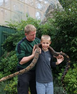 Boy holds large snake in Glad Zoo